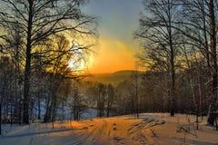 Puesta del sol brillante del invierno en el bosque de la montaña Fotografía de archivo libre de regalías
