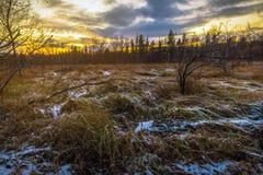 Puesta del sol brillante del otoño Imagenes de archivo