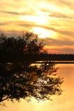 Puesta del sol brillante sobre el lago con los árboles Fotografía de archivo libre de regalías