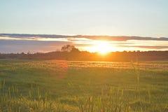 Puesta del sol brillante sobre el prado letón Imágenes de archivo libres de regalías