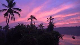 Puesta del sol caliente de la tarde nublada púrpura rosada sobre bosque tropical de la palmera en la isla en el lago tranquilo de