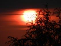 Puesta del sol caliente del verano Foto de archivo libre de regalías