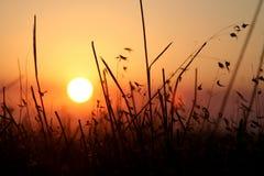 Puesta del sol californiana Imágenes de archivo libres de regalías