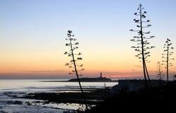 Puesta del sol cerca del faro de Trafalgar del cabo, España Imagen de archivo