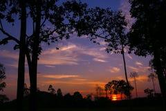 Puesta del sol colorida del cielo en el bosque Fotos de archivo libres de regalías