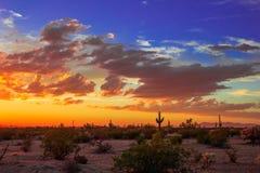 Puesta del sol colorida del desierto de Arizona cerca de Kearny Foto de archivo