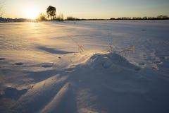 Puesta del sol colorida del invierno imagen de archivo