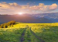 Puesta del sol colorida del verano en las montañas cárpatas Imagen de archivo