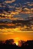 Puesta del sol colorida detrás de los árboles Imágenes de archivo libres de regalías