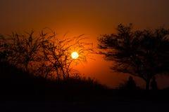 Puesta del sol colorida en el arbusto africano Fotografía de archivo libre de regalías