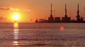 Puesta del sol colorida en el puerto El sol en los sistemas del fondo sobre el horizonte almacen de metraje de vídeo