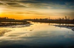 Puesta del sol colorida en un paisaje inundado del pólder Fotografía de archivo libre de regalías