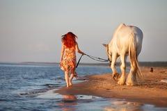 Puesta del sol con el caballo en la playa Fotos de archivo libres de regalías
