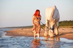 Puesta del sol con el caballo en la playa Fotografía de archivo libre de regalías