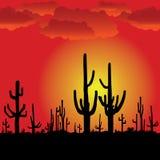 Puesta del sol con el cacto del Saguaro. Fondo del vector. ilustración del vector