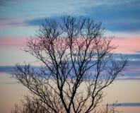 Puesta del sol con el cielo colorido Fotografía de archivo