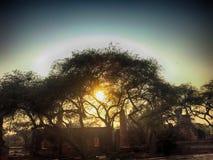 Puesta del sol con el templo viejo en la provincia de Ayuthaya, parque histórico Tailandia Fotos de archivo