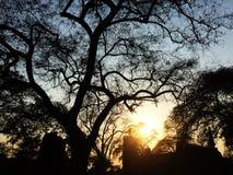 Puesta del sol con el templo viejo en la provincia de Ayuthaya, parque histórico Tailandia Foto de archivo libre de regalías