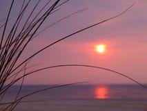 Puesta del sol con la hierba de la duna Fotografía de archivo libre de regalías