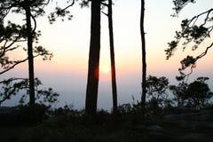 Puesta del sol con la opinión del bosque con técnica de la silueta Foto de archivo