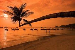 Puesta del sol con la palma y los barcos en la playa tropical Fotografía de archivo