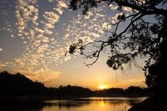 Puesta del sol con la silueta de árboles Imágenes de archivo libres de regalías