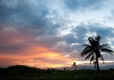 Puesta del sol con la silueta de árboles Fotografía de archivo