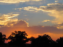 Puesta del sol con la silueta de las nubes y de los árboles del Anaranjado-oro que brilla intensamente Fotos de archivo libres de regalías