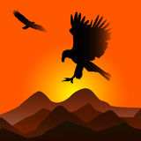 Puesta del sol con las águilas Foto de archivo