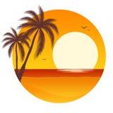 Puesta del sol con las palmeras Imagen de archivo libre de regalías