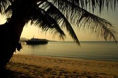 Puesta del sol con las palmeras Fotografía de archivo