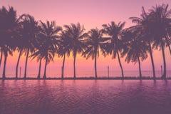Puesta del sol con las palmeras de la silueta Foto de archivo libre de regalías