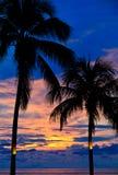 Puesta del sol con las palmeras en la playa Foto de archivo