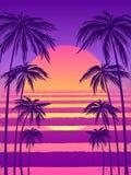 Puesta del sol con las palmeras, fondo púrpura de moda Vector el ejemplo, diseñe el elemento para las tarjetas de la enhorabuena, ilustración del vector