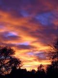 Puesta del sol con los árboles Fotografía de archivo