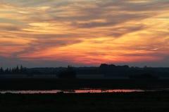 Puesta del sol con los pájaros Imagenes de archivo