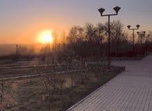 Puesta del sol con los rayos de sol en el parque fotos de archivo libres de regalías