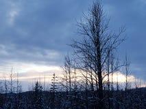 Puesta del sol congelada en Alaska imágenes de archivo libres de regalías