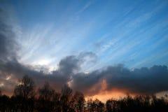 Puesta del sol contra bosque foto de archivo
