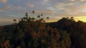 Puesta del sol costera dramática con la isla fotos de archivo