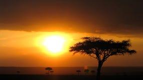 Puesta del sol de África Imágenes de archivo libres de regalías