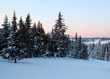 Puesta del sol de Alaska rosada Fotos de archivo libres de regalías