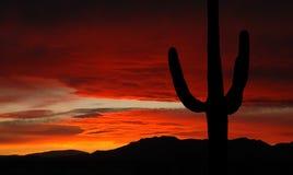 Puesta del sol de Arizona Imagen de archivo libre de regalías