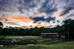 Puesta del sol de Borneo Fotografía de archivo libre de regalías