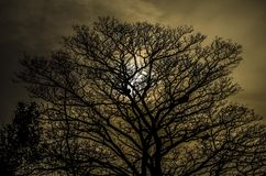 Puesta del sol de Edimburg Imagen de archivo libre de regalías