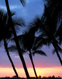 Puesta del sol de Hawaii imagen de archivo libre de regalías