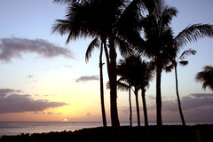Puesta del sol de Hawaiin fotos de archivo