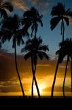 Puesta del sol de Kihei Fotografía de archivo libre de regalías