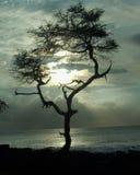Puesta del sol de Kona Foto de archivo