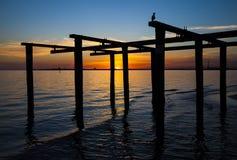 Puesta del sol de la bahía de Melbourne Fotos de archivo